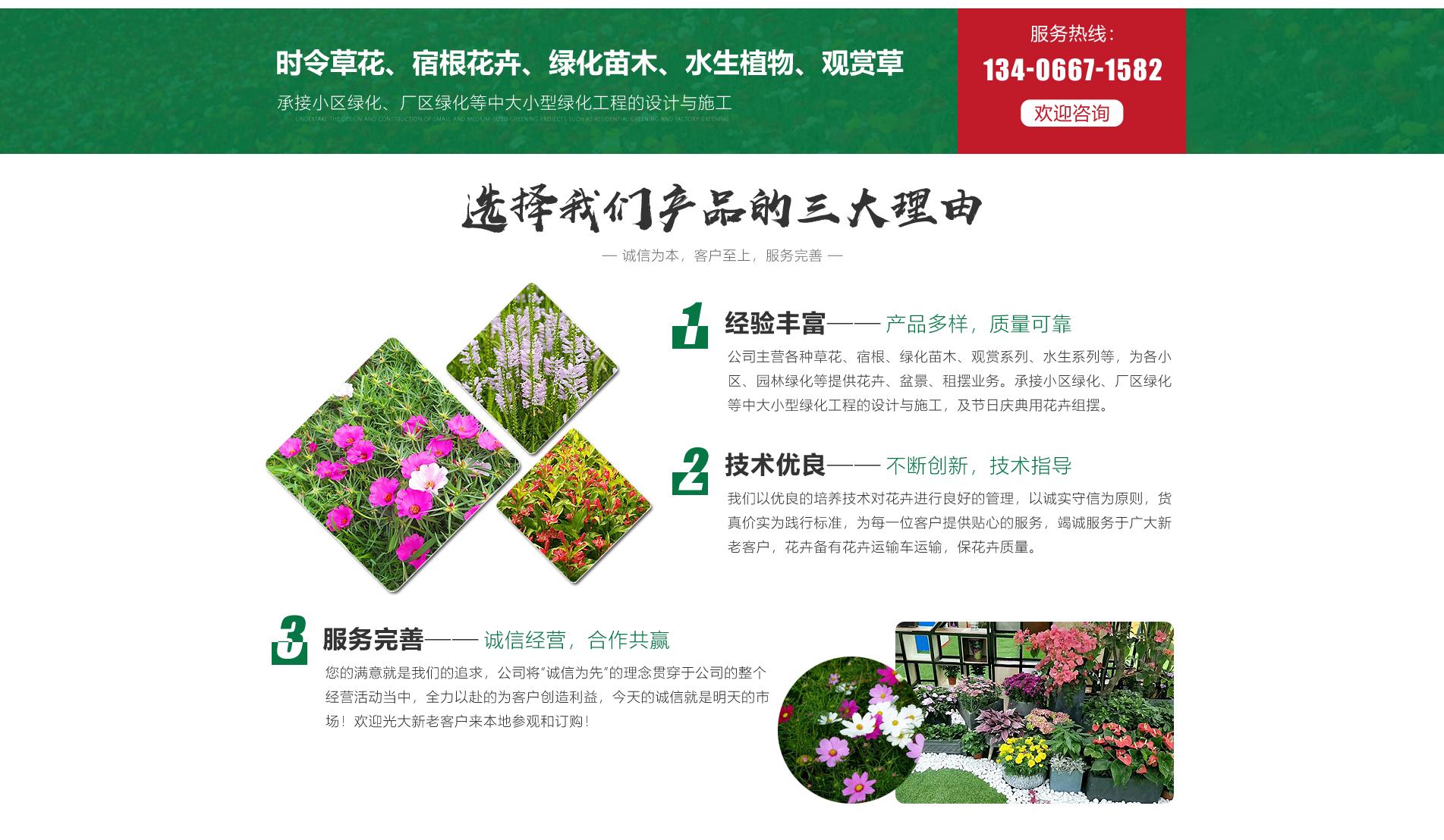 青州君达花卉苗木有限公司