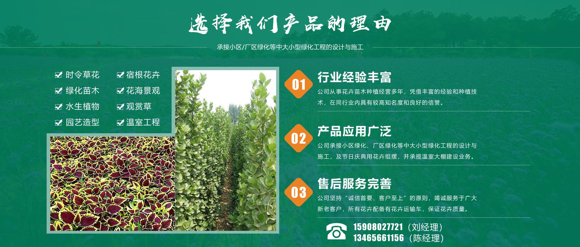 青州市国樾生态农业有限公司